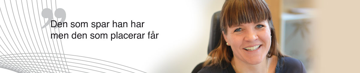 Global Invest Tillsyn